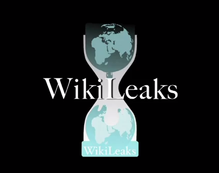 I support WikiLeaks